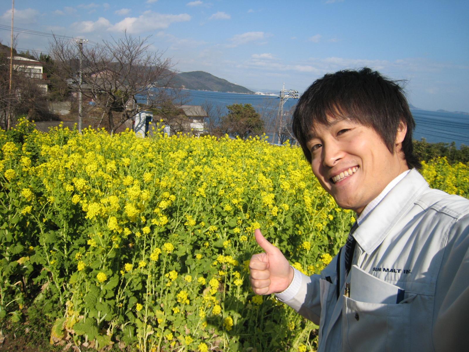 福山市田尻町で開催される菜の花まつり2014