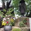福山市鞆町で「鞆の津 町並み 花めぐり2015」が開催(9/4~6,19~21)
