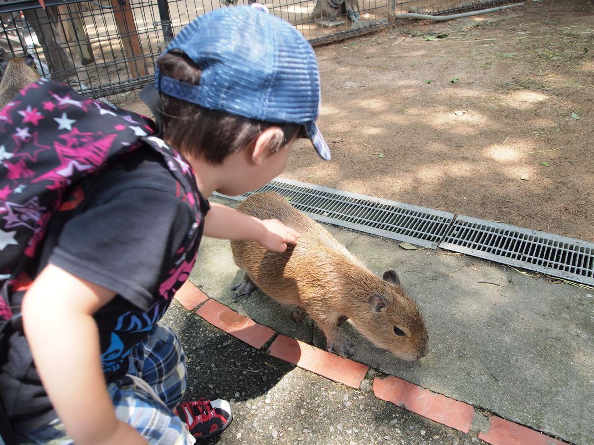 福山市内から車で1時間58分、2歳児が遊べる姫路セントラルパーク