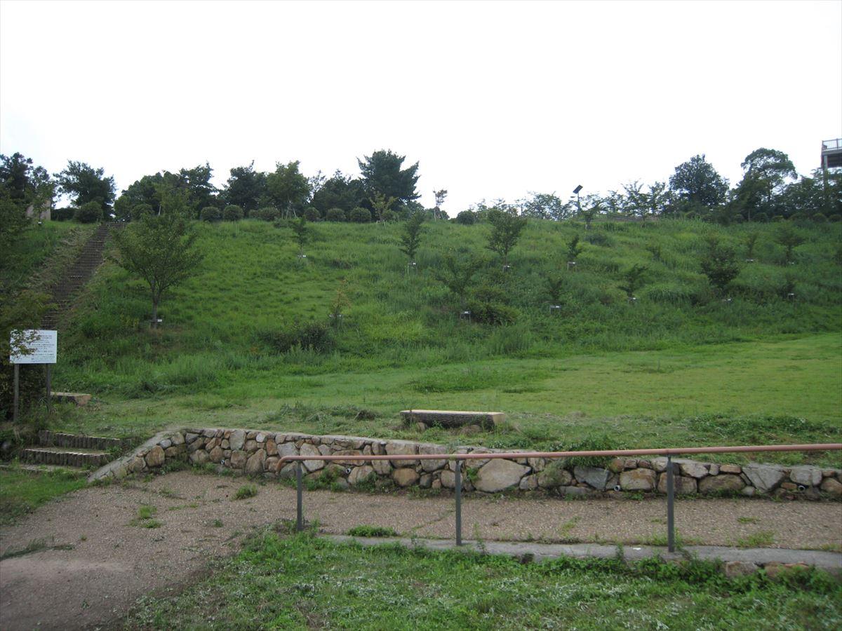 福山市の大きな公園「後山公園(グリーンライン展望台)」