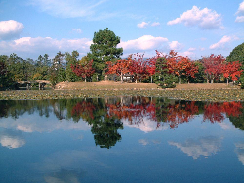 【岡山県 備中エリアの紅葉スポット8選】福山市内から車で2時間圏内