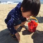 福山市から車で50分、浅口市の青佐鼻海岸でビーチコーミング(貝殻集め)