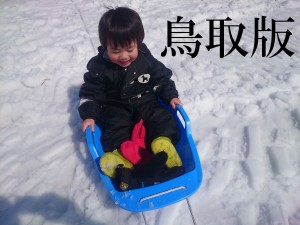 スキー場鳥取版