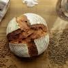 住宅宣言ふくやま「パンのマルシェ」の開催概要(2016年4月9日~10日)