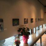 鞆の浦 鯛匠の郷とっとギャラリーにて開催中の「鞆ヲ歩ケバ猫ニ当タル写真展」に行ってきました!港町鞆の浦の風景とまどろむ猫の写真を展示