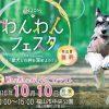 福山市中央公園で「わんわんフェスタ&ワン!だぁカフェ」が開催(2016年10月10日)愛犬との絆を深める様々なイベントが開催。