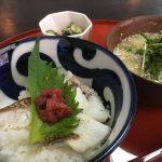 鞆の浦ちりめんグルメ#2「あぶり鯛丼とちりめん冷や汁」~季節料理 衣笠