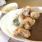 福山市駅家町のカレー「カレーハウスWAKANA(わかな)」~鶏がらスープから作った特製唐揚げカレー