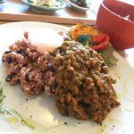 福山市南手城町のカレー「発酵食堂UTD」~もちもち発芽寝かせ玄米を使った酵素カレー