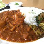 【カレー】福山市沼隈町の「レストランTOCO²(とことこ)」~まぼろしのトコトコカレー夏野菜を添えて