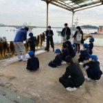 【わかめ養殖】鞆の浦学園の児童たちが刈り取りを体験!~12月中旬に植え付け2月下旬に収穫